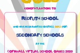 Redruth School Wins Gold at the Cornwall Virtual School Games